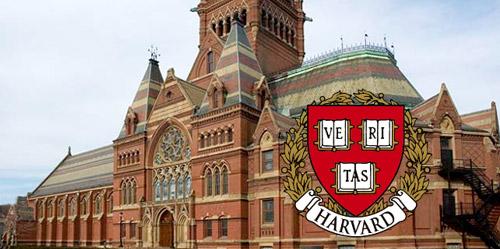 Nessuna italiana tra le 100 migliori università al mondo